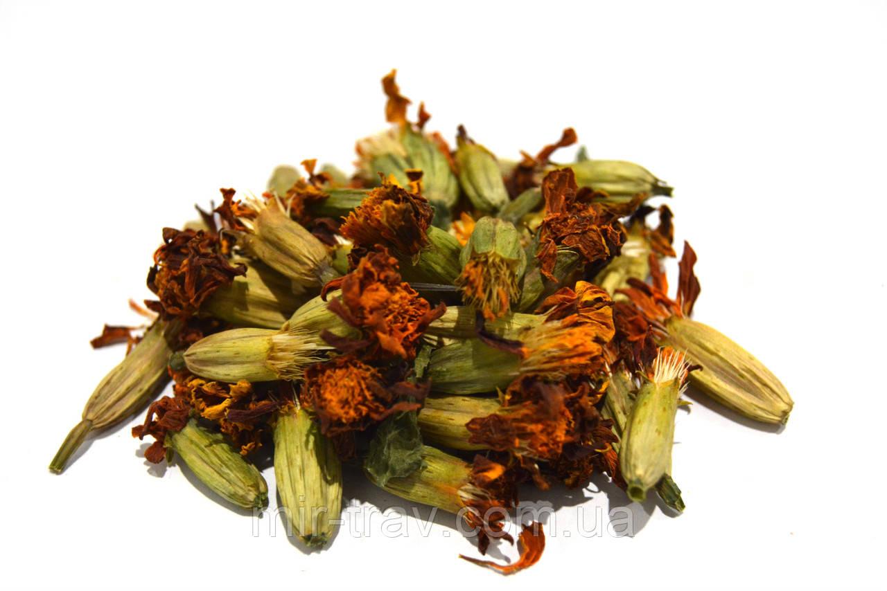 Чернобривцы цветки (бархатцы)