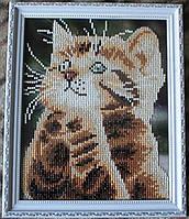 "Картина  ""Котик-малыш"" от студии LadyStyle.Biz"