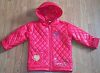 """Детская весенняя курточка для девочек""""Птичка"""""""