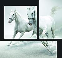 Модульные картины - скинали Лошади