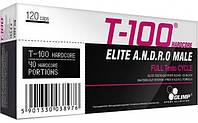 OLIMP T-100 120 (caps)