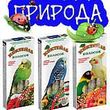 Корм и лакомства для декоративных птиц «Сафлор, лесные ягоды, кокос», фото 2