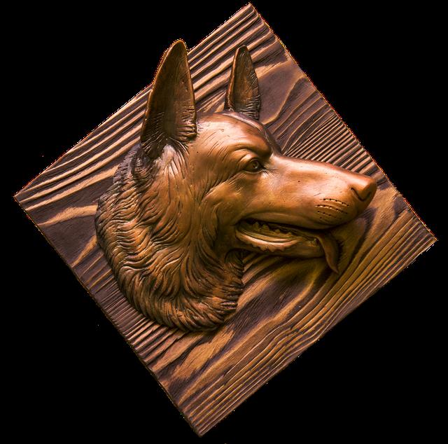 голова собаки фото