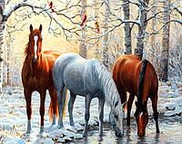 Алмазная вышивка без коробки MyArt Тройка лошадей 40 х 30 см (арт. MA477)