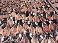 Рыба вяленая и рыба холодного копчения