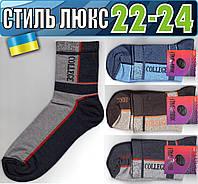 Детские носки демисезонные СТИЛЬ ЛЮКС Украина 22-24р ассорти НДД-296