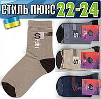 Детские носки демисезонные СТИЛЬ ЛЮКС Украина 22-24р   ассорти НДД-299