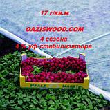 Агроволокно р-17 3,2*100м AGREEN 4сезона белое Итальянское качество, фото 10