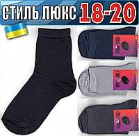 Детские носки демисезонные СТИЛЬ ЛЮКС Украина 18-20р  НДД-300