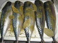 Рыба соленая и пряная