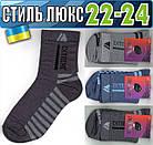 Детские носки демисезонные СТИЛЬ ЛЮКС Украина 22-24р ассорти НДД-08305, фото 2