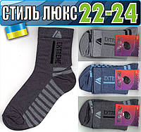 Детские носки демисезонные СТИЛЬ ЛЮКС Украина 22-24р  ассорти    НДД-305