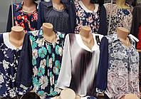 Блуза больших размеров  в модный принт