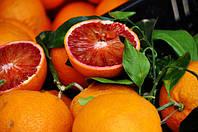 """Апельсин Моро (Citrus sinensis cv. Moro) Комнатный """"Кровавый апельсин"""""""
