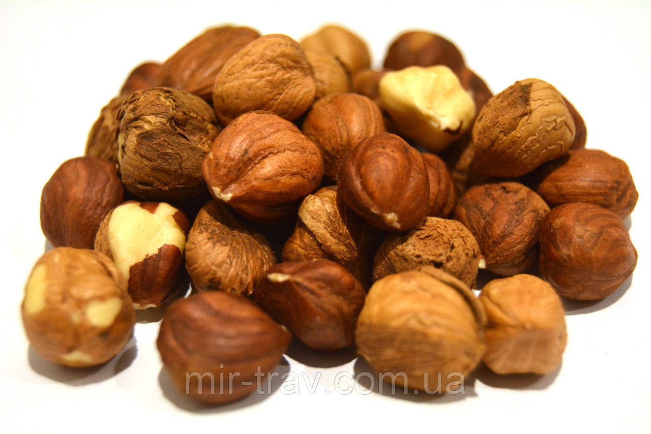 Фундук орех