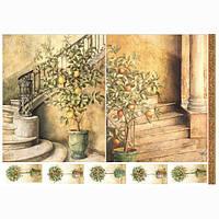 Бумага для декупажа 21х30 см Деревья лимонов