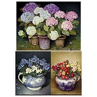 Бумага для декупажа 21х30 см Цветы в горшках