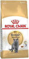 Royal Canin British Shorthair Adult, 4 кг