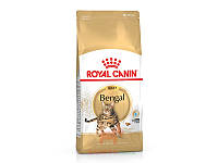 Bengal Adult для бенгальских кошек старше 12 месяцев (Роял Канин) Royal Canin (2 кг)