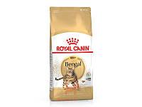 Bengal Adult для бенгальских кошек старше 12 месяцев (Роял Канин) Royal Canin (10 кг)
