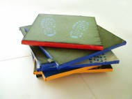 Дезинфекционный коврик 50 х 100х3 см