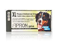 Фипрон спот-он XL - капли от блох и клещей для собак 40- 60кг (1пипетка)