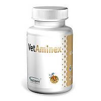 VetExpert VetAminex  (60 кап)- витаминно-минеральный препарат для собак и кошек (46695)