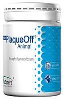 VetExpert PlaqueOff (40г)- пищевая добавка для профилактики и лечения  зубного камня у кошек и собак (13066)