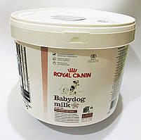 Royal Canin Babydog Milk 2кг(5 х 400г)-замінник молока для цуценят з народження до відлучення