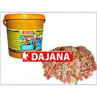 Dajana Tropica Basic 10л/2кг -полноценное питание для аквариумных рыбок из 7 видов хлопьев