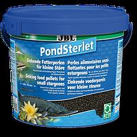 JBL PondSterlet 5,5 л Корм в виде тонущих гранул для осетров (41035)