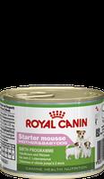 Royal Canin Starter Mousse195г - мусс для щенков до 2-х месяцев