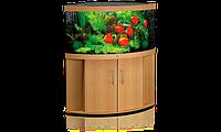 Juwel Trigon на 350 литров-Угловой аквариум для рыб