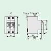 Автоматический выключатель 25A 6кА 2 полюса тип C PL6-C25/2 Eaton (Moeller), фото 2