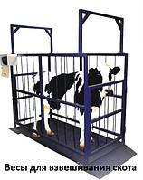 Весы 2000х1500х1500 мм. для взвешивания животных до 1000 кг.