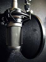 Запись аудиороликов, аудиорекламы, озвучка, аранжировки