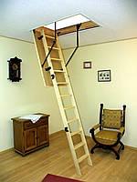 Чердачная лестница Oman Prima 120x60,120х70