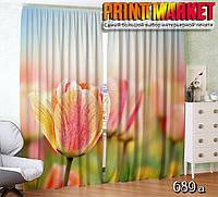 Фотошторы желто-розовый тюльпан