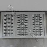 Лоток для тарілок у висувний ящик 845-480 мм. сірий, фото 3