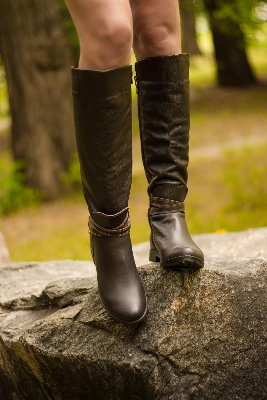170dd0fc5 ... М Сапоги женские из натуральной кожи коричневого цвета осень-зима  коллекция 2016-2017, ...