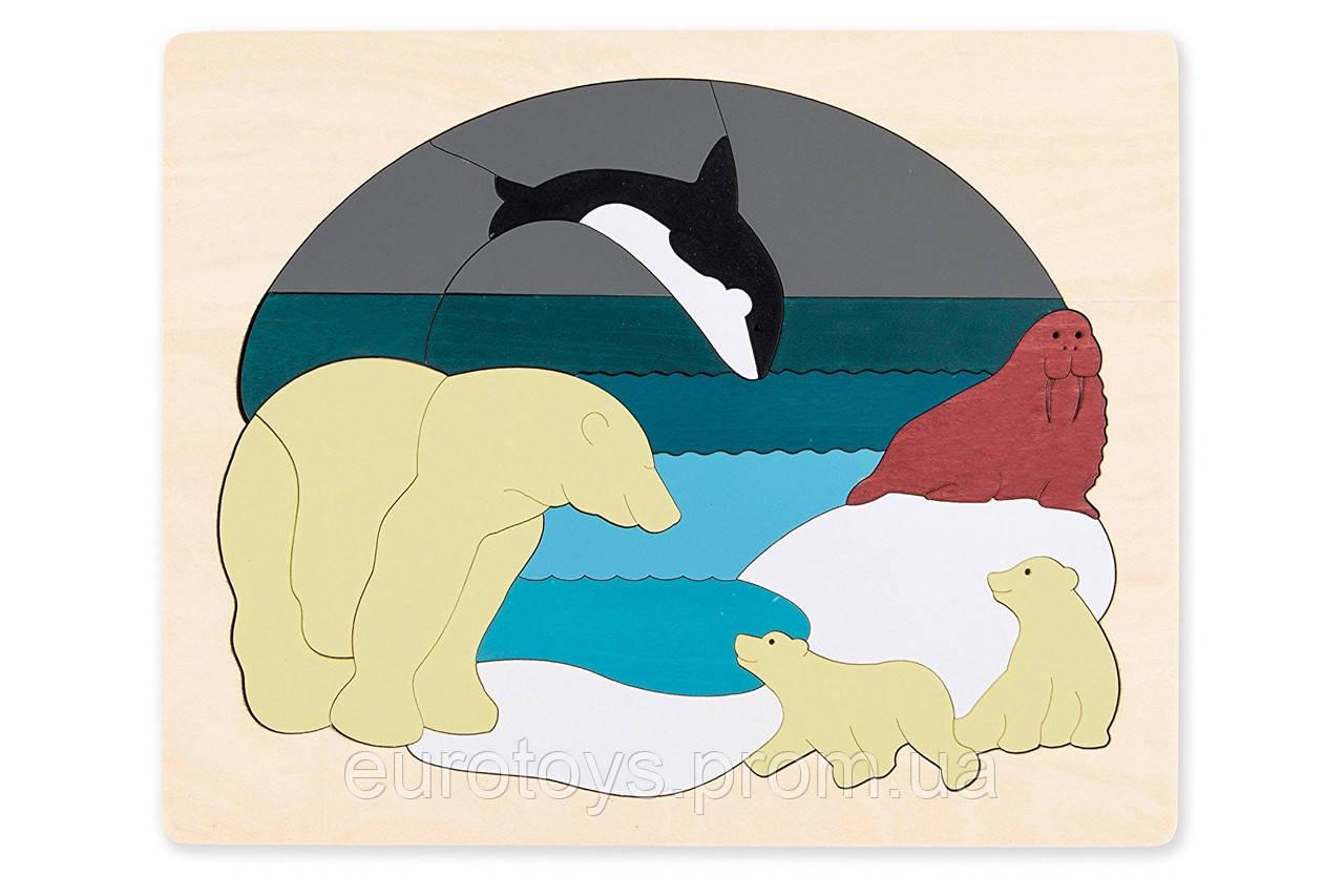 HAPE Двухсторонний пазл  Животные Арктики серии George Luck (E6522)