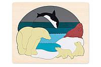 HAPE Двухсторонний пазл  Животные Арктики серии George Luck (E6522), фото 1