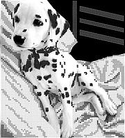 Схема для вышивки бисером POINT ART Далматинец, размер 19х21 см