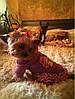 """Толстовка,  пальто ажурное """"Две звездочки"""" для собаки, кошки. Одежда для собак, кошек., фото 10"""