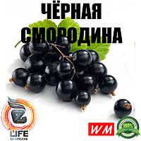 Ароматизатор World Market ЧЁРНАЯ СМОРОДИНА
