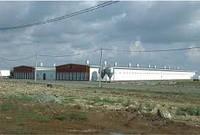 Строительство животноводческих комплексов, холодильных складов, реконструкция ферм