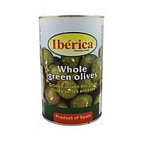 Оливки с косточкой Iberica / Иберика, 4кг, сухой вес 2,5кг, калибр 200/220 ж/б банка, Iberika