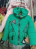 Куртка 17.05
