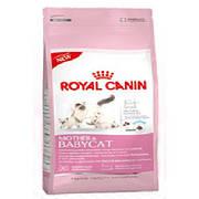 Royal Canin Mother&Babycat 10кг для котят до 4 месяцев, беременных и кормящих кошек