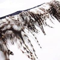 Перья петуха черно-белые декоративные на ленте  25 см длина